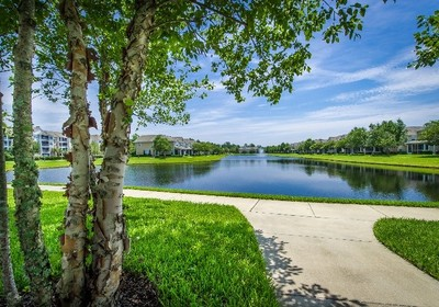 Florida Commercial Landscaping: An Eye for Reflection