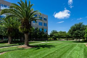 5 Walkway Ideas for Your Commercial Space