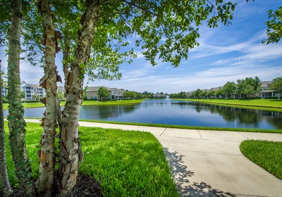 Central Florida Commercial Landscaping: DIY or Don't?