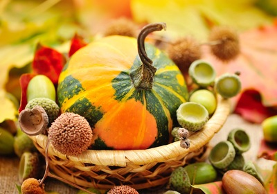 Happy Thanksgiving: Gratitude for Natural Beauty and Beyond