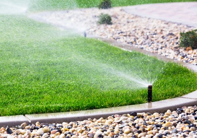 Landscaping Solutions to Save Time, Money, and Water