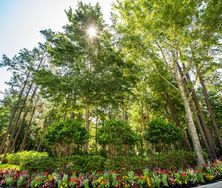 How Flowers Create Impressive Florida Commercial Landscaping