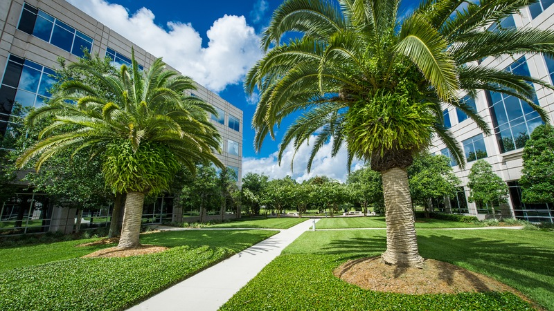 How Commercial Landscaping Attracts and Retains Tenants